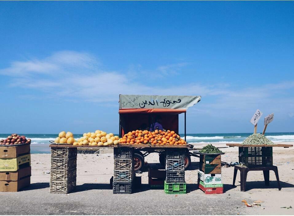 Gaza citrus